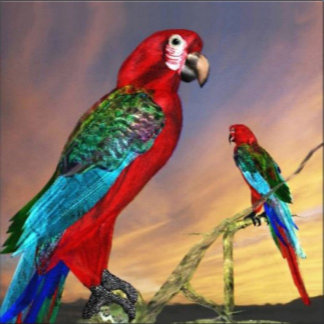 Hyper Birds