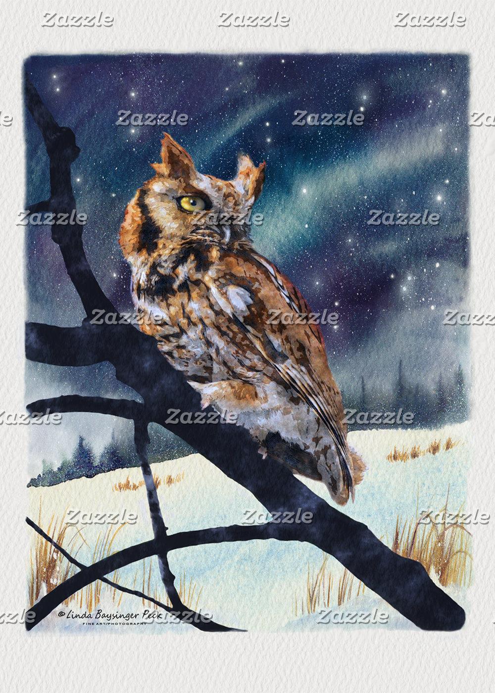 Screech Owl Winter Night