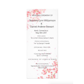 Programs for Parties or Weddings
