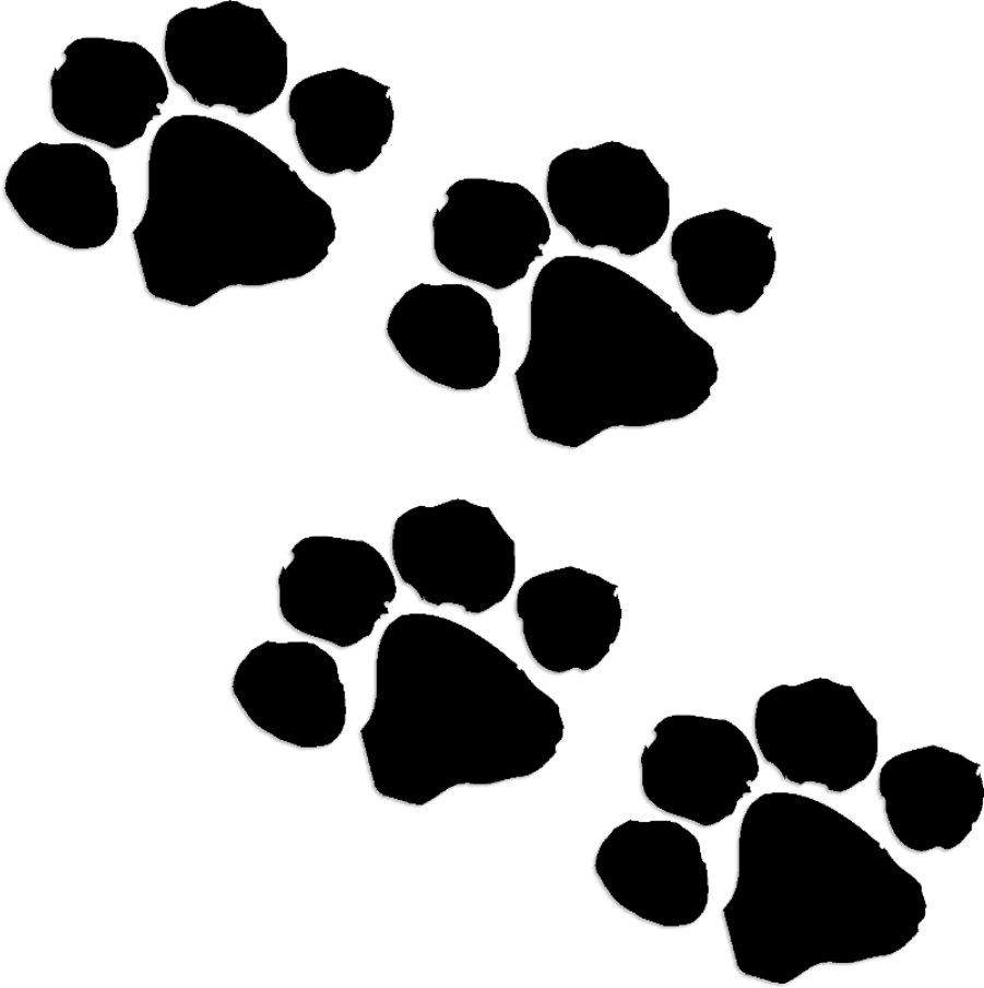 Animal Paw Prints