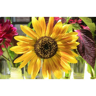 Wild Flower Floral Designs