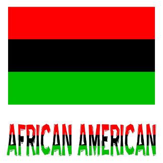 African American or African Diaspora
