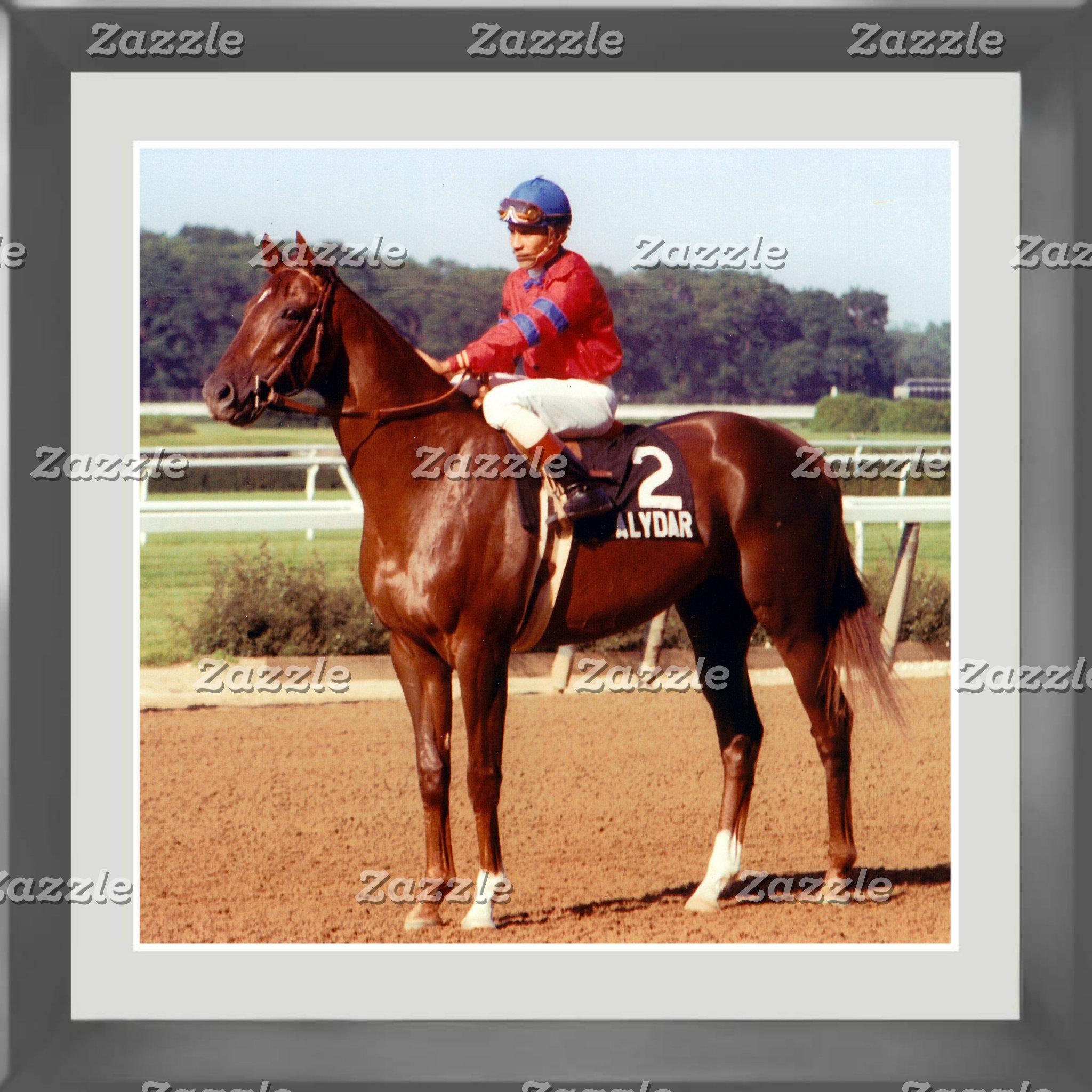 Horse Racing!