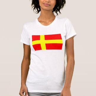 Svensk talande etnisk flaggaskandinavien för tröja