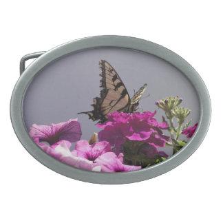 Swallowtail fjäril och lila blommor