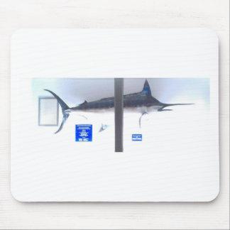 swordfishobx musmatta