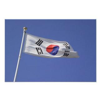 Sydkoreansk flagga fototryck