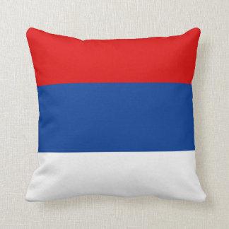 Symbol för landskap för Misiones flaggaArgentina Kudde