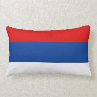 Symbol för landskap för Misiones flaggaArgentina Lumbarkudde