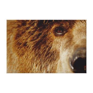Syna till I-grizzlyen, den episka Cavas upplagan s Canvastryck