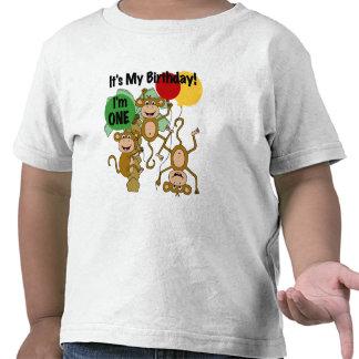 T-tröja och gåvor för födelsedag för apasken 1st