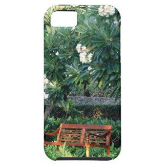 Ta av planet iPhone 5 cases