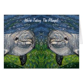 Ta dykningen: Delfiner: Sparan daterar och att Hälsningskort