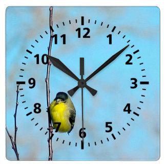 Ta tid på - den gula finchen fyrkantig klocka