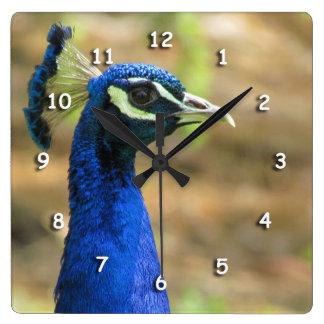 Ta tid på - påfågelporträtt klocka
