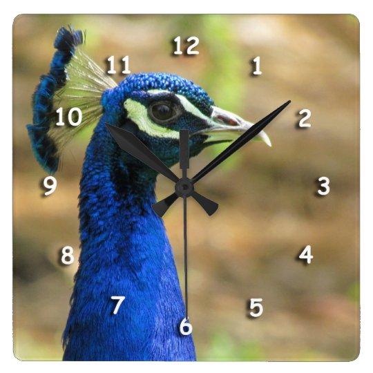 Ta tid på - påfågelporträtt fyrkantig klocka