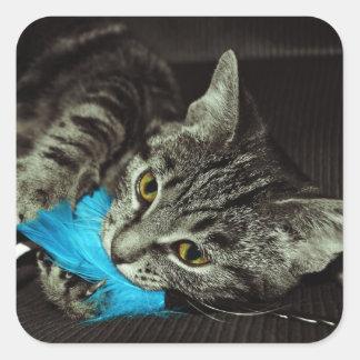 Tabby katt med fjädern av Shirley Taylor Fyrkantigt Klistermärke