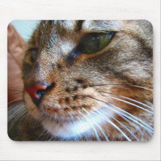 Tabby kattmousepad musmatta