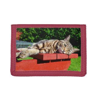 Tabby kattplånbok