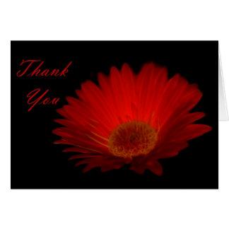 Tack - Gerber Hälsningskort