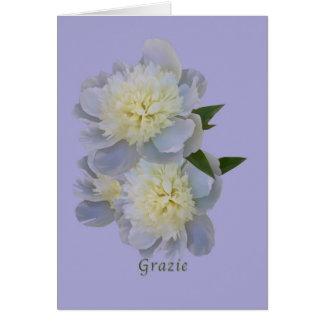 Tack Grazie, italienare, vitpionkort Hälsningskort
