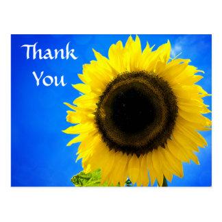 Tack gulnar solroshälsningvykortet vykort