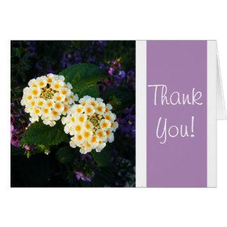 Tack! Hälsningskort