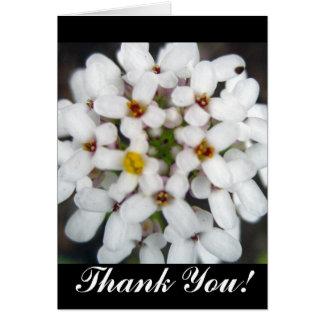 Tack! Hälsnings Kort