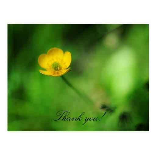 Tacka dig! vykort
