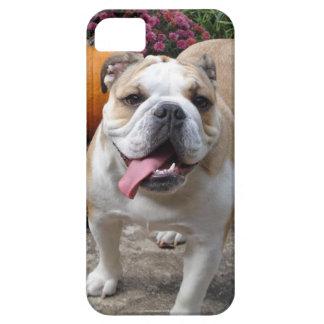 Täcker gullig rolig iPhone 5 för den engelska iPhone 5 Case-Mate Fodral