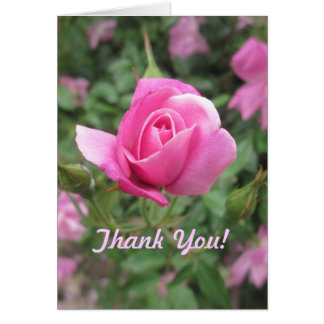 Tackkort 1 hälsnings kort