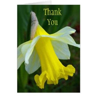 Tackkort - gul påsklilja hälsningskort