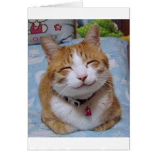 Tackkort med den lyckliga katten hälsningskort