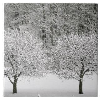Täckt snö landskap kakelplatta
