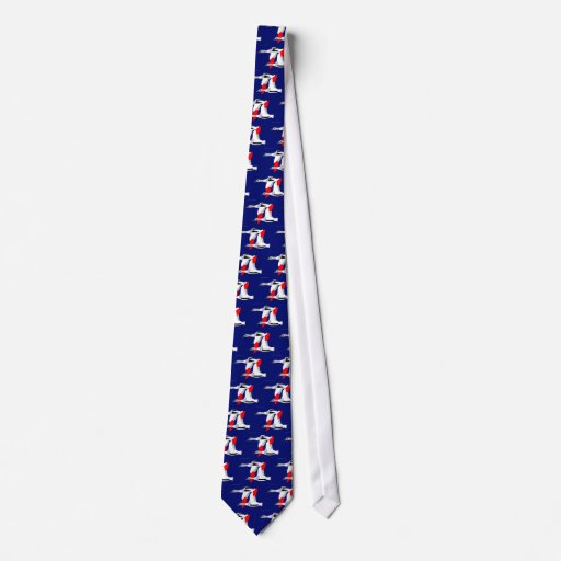 Tadorna tadorna slips