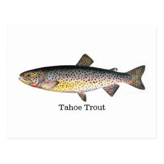 Tahoe forellfisk vykort