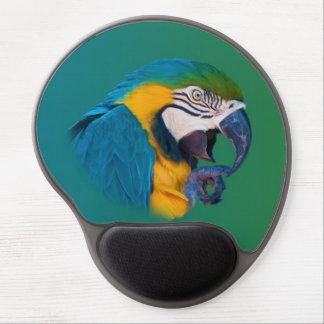 Talande papegoja gel musmatta