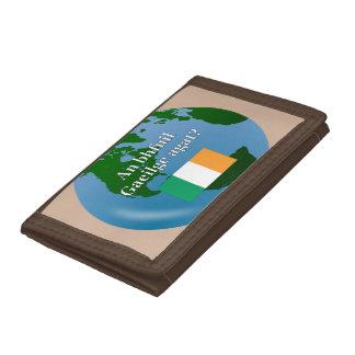 Talar du irländare? i irländare. Flagga & jordklot