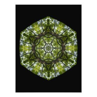 Tända och mönstra i löven konstfoto