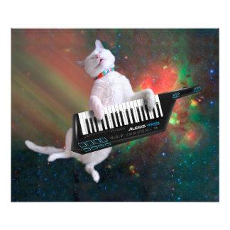 Tangentbordkatt - utrymmekatt - roliga katter - fototryck