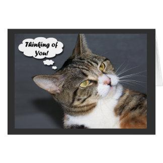 Tänkande av dig med fotoet av en gullig katt hälsningskort