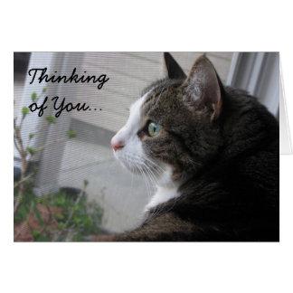 Tänkande av dig som dagdrömmer katten Notecard OBS Kort