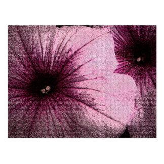 Tapestry texturerade rosa- & svartPetunias Vykort