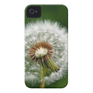 Tar tid på iPhone 4 Case-Mate fodral