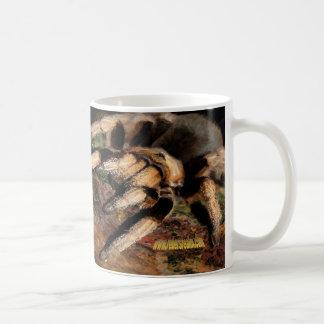 Tarantel 4 kaffemugg