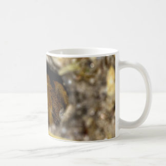 TarantelSkinn-Bort Kaffemugg