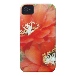 Tea för iphone case två iPhone 4 hud