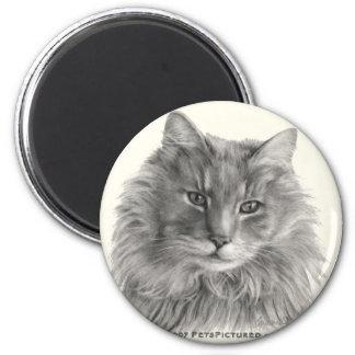 TeeGee långhårig grå katt Magnet Rund 5.7 Cm