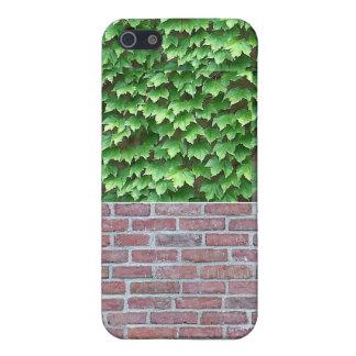 Tegelstenar och murgröna för iPhone 4 iPhone 5 Fodral