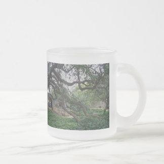 Tendrilträd på Alamoen, San Antonio, Texas Frostad Glasmugg